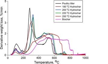 Derivative weight loss of poultry litter, hydrochar and biochar