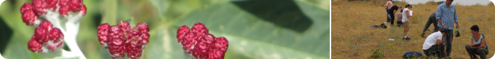 SmallBanner_02.png